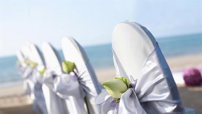 Wedding---Setup-.jpg
