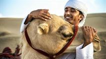 CAMEL EXCURSIONS