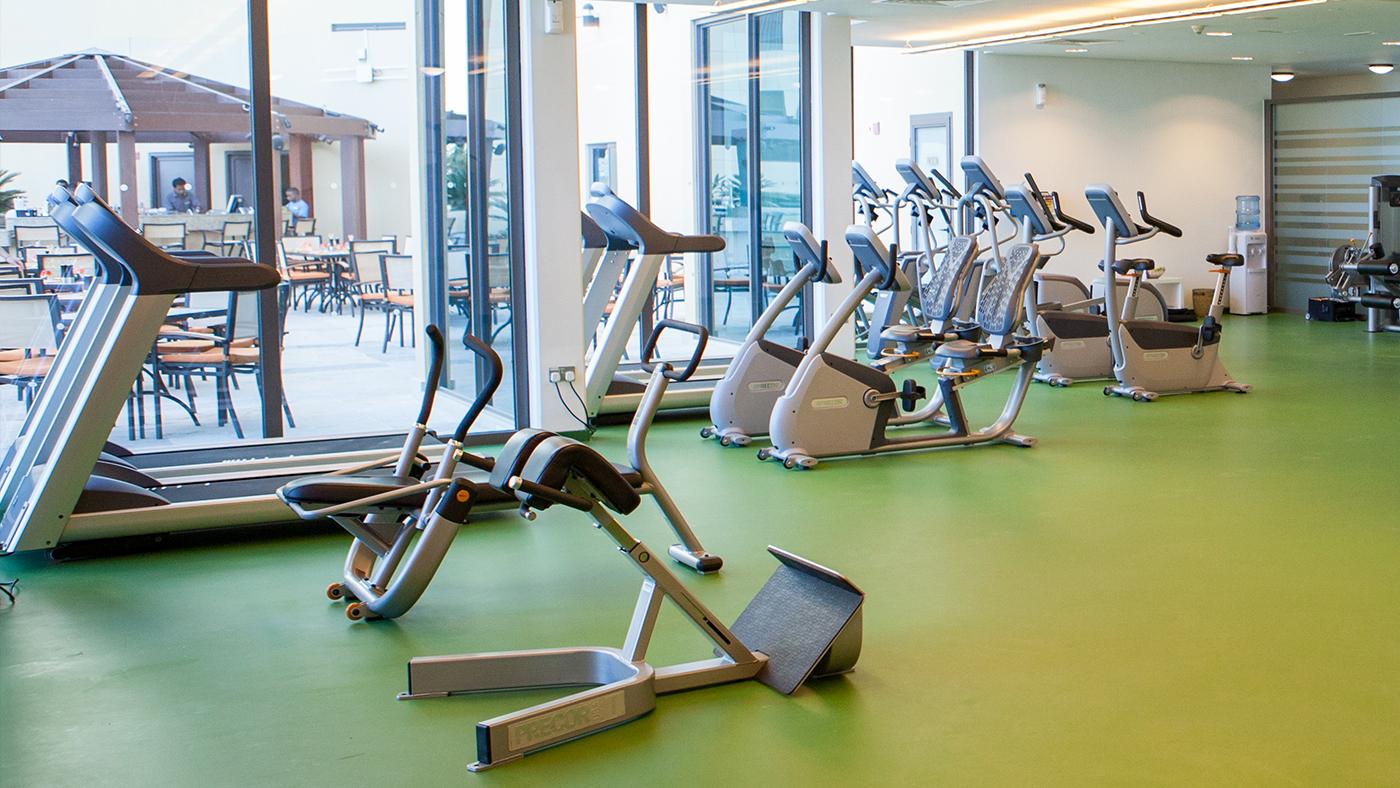 Gym---Equipment